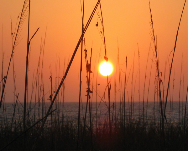 sunset-6_0