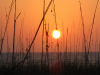 sunset-6_1